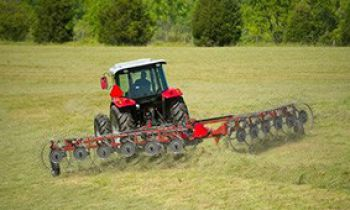 CroppedImage350210-MasseyFerguson-3900-Series-Wheel-Rakes.jpg