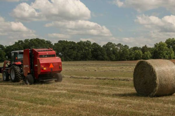 Massey Ferguson | Hesston by Massey Ferguson | Round Balers for sale at Sorum Tractor Co., Inc.