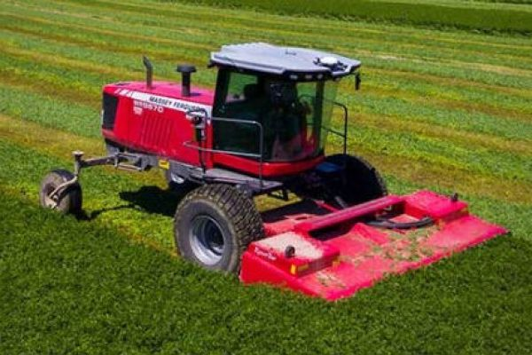 Massey Ferguson | Hesston by Massey Ferguson | SP Windrowers for sale at Sorum Tractor Co., Inc.