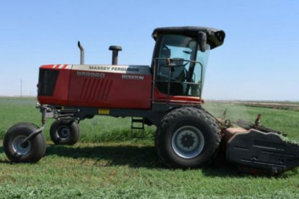 Massey Ferguson | WR9900 Series Windrowers | Model WR9960 for sale at Sorum Tractor Co., Inc.