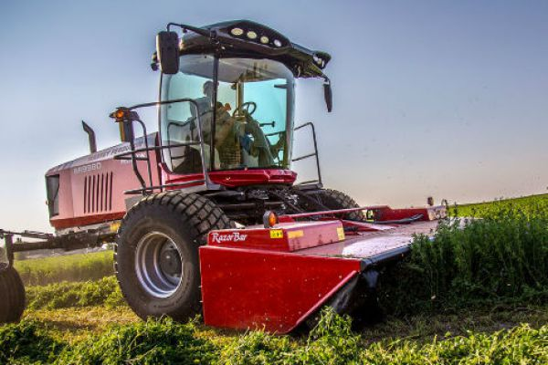 Massey Ferguson | WR9900 Series Windrowers | Model WR9980 for sale at Sorum Tractor Co., Inc.