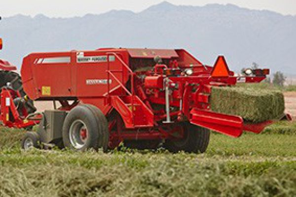 Massey Ferguson | Square Balers | 1800 Small Square Balers for sale at Sorum Tractor Co., Inc.