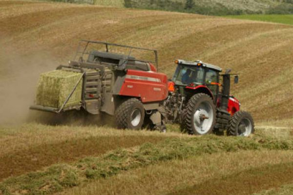 Massey Ferguson | 2200 Series Large Square Balers | Model MF 2270 (3'x4') for sale at Sorum Tractor Co., Inc.